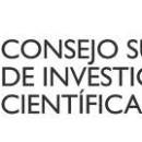 BOLSA DE TRABAJO – CONSEJO SUPERIOR DE INVESTIGACIONES CIENTÍFICAS – CSIC (2121.2013)